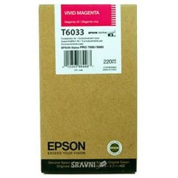 Epson C13T603300