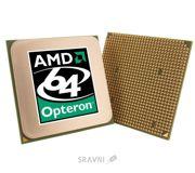 Фото AMD Opteron 246