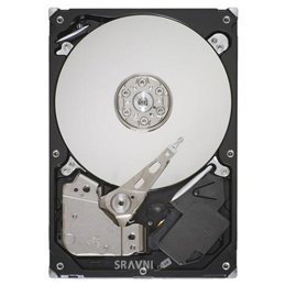 Seagate ST3500410AS