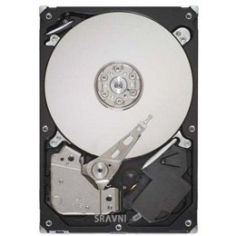 Seagate ST3250318AS