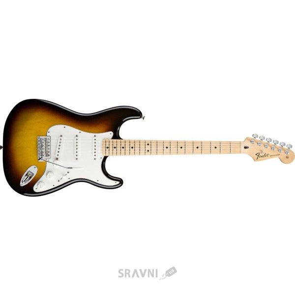 Фото Fender Standard Stratocaster MN