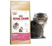 Фото Royal Canin Kitten Persian 32 0,4 кг